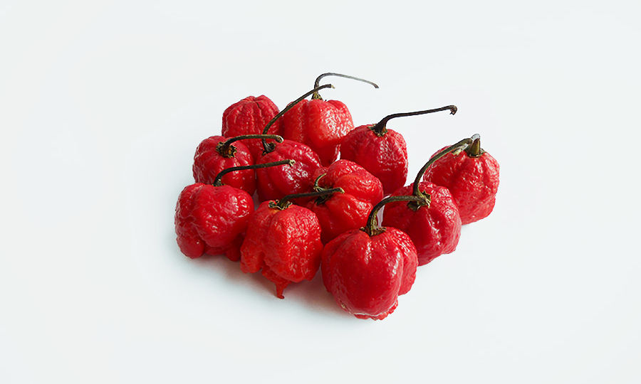 Trinidad-moruga-scorpion-red 900x562